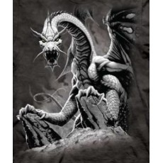 Camiseta dragones black...