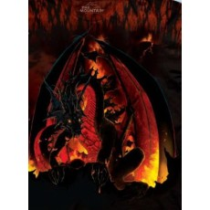 Camiseta dragones fireball...