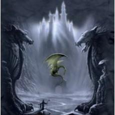 Camiseta dragones lost...